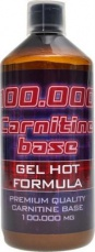 Holma Carnitine Base 100.000 gel 1000 ml
