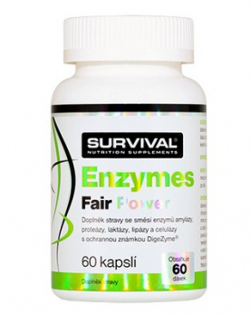 Survival Enzymes Fair Power 60 kapslí