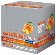 Wellness Food Carnitine 2000 25ml - meruňka se zázvorem PROŠLÉ DMT