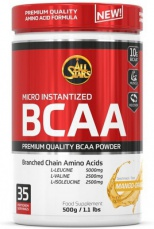 All Stars Powder BCAA 500 g