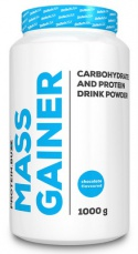 Protein.Buzz Mass Gainer 1000 g