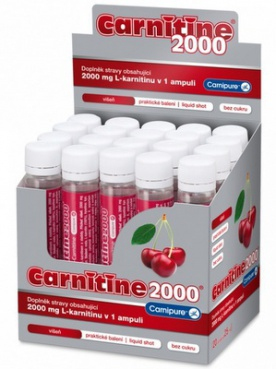 Wellness Food Carnitine 2000 25 ml