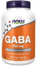 Now Foods Gaba 750 mg