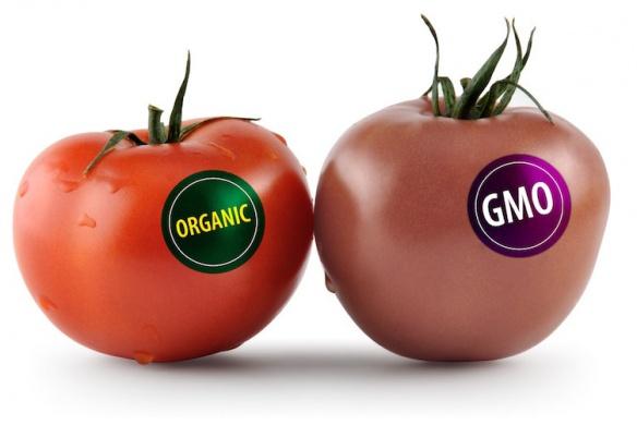 Jsou organické potraviny zdravější? Je organický protein či tyčinka lepší?