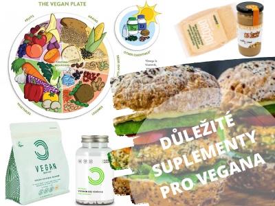 Důležité doplňky stravy pro vegany. Seznam potravin. Co si hlídat, když chci být veganem?
