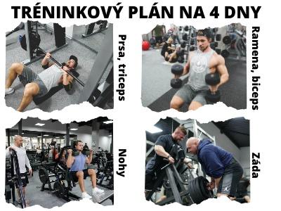 Jak si sestavit tréninkový plán? Cvičení pro zpevnění těla, budování svalové hmoty a síly.