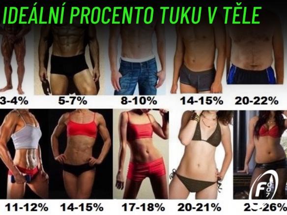 Složení těla. Ideální procento tuku v těle. Kolik tělesného tuku bychom měli mít?
