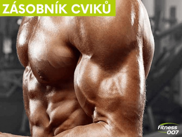 Nejlepší cviky na biceps. 5 cviků na rozvoj a objem bicepsů.