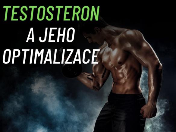 Jak zvýšit testosteron? Jak optimalizovat jeho hladinu a co ho snižuje?